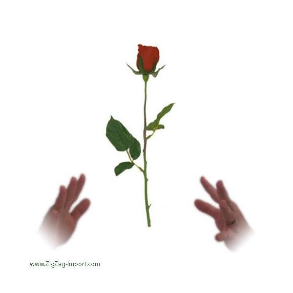 rose volante flying rose quoi de plus magique que de faire l viter une rose autour de vous. Black Bedroom Furniture Sets. Home Design Ideas