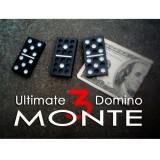 Domino Monte