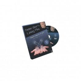 Les épingles de Gaëtan Bloom - DVD Linking Pins